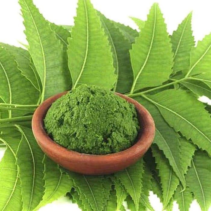 cách trị gàu ngứa da đầu bằng lá neem