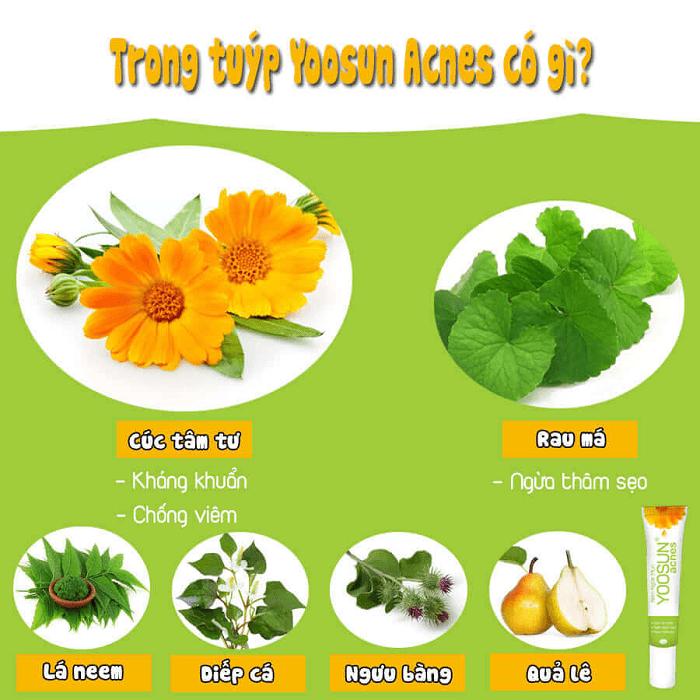 kem trị mụnyoosun acnes