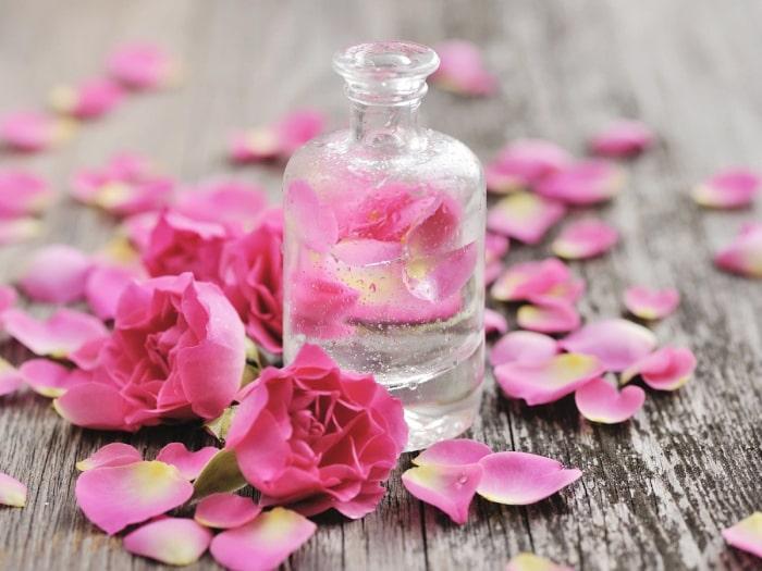 nước hoa hồng cho da dầu mụn